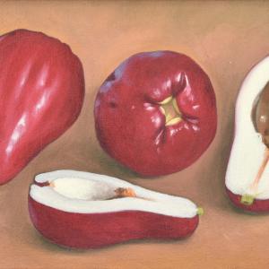 Manzanas Malayas painting